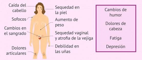 Síntomas-en-el-climaterio-y-menopausia_opt